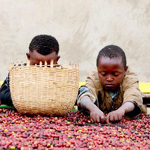 ethiopia adado natural