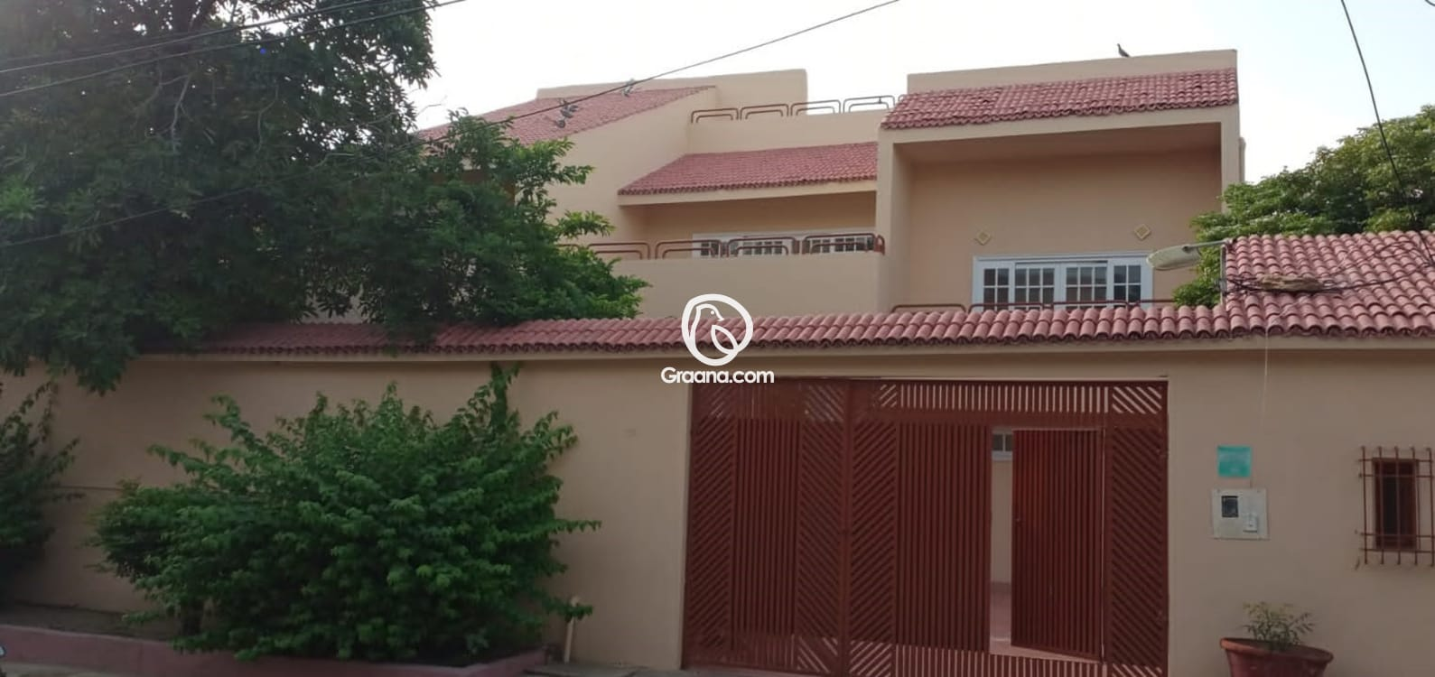 500 Sqyd  House for Rent   Graana.com