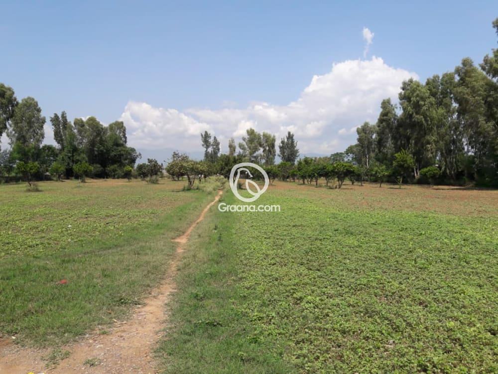 Farmhouse Plot for Sale | Graana.com