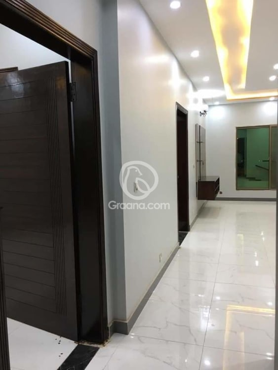125 Sqyd House For Rent | Graana.com