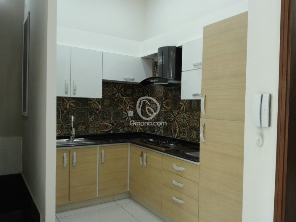 240 Sqyd  House for Rent | Graana.com