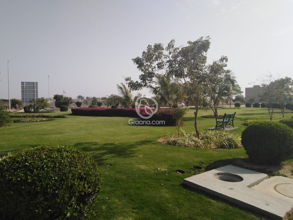 272 Sqyd House For Rent | Graana.com