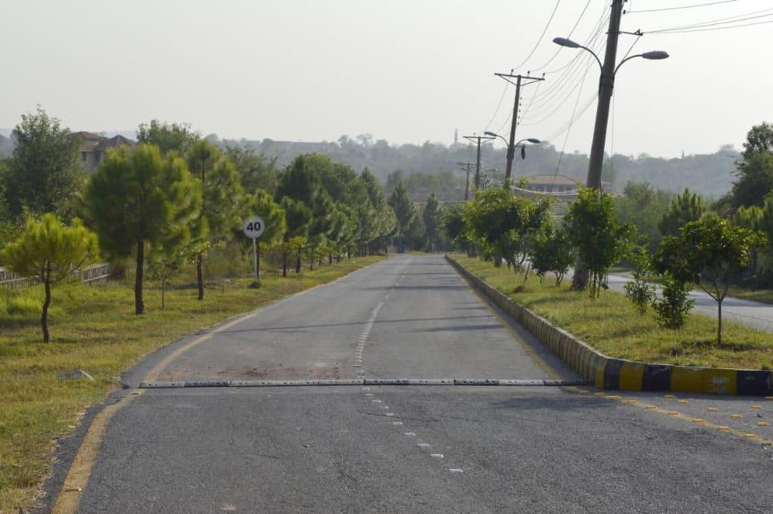 20 kanal Farmhouse plot for sale | Graana.com