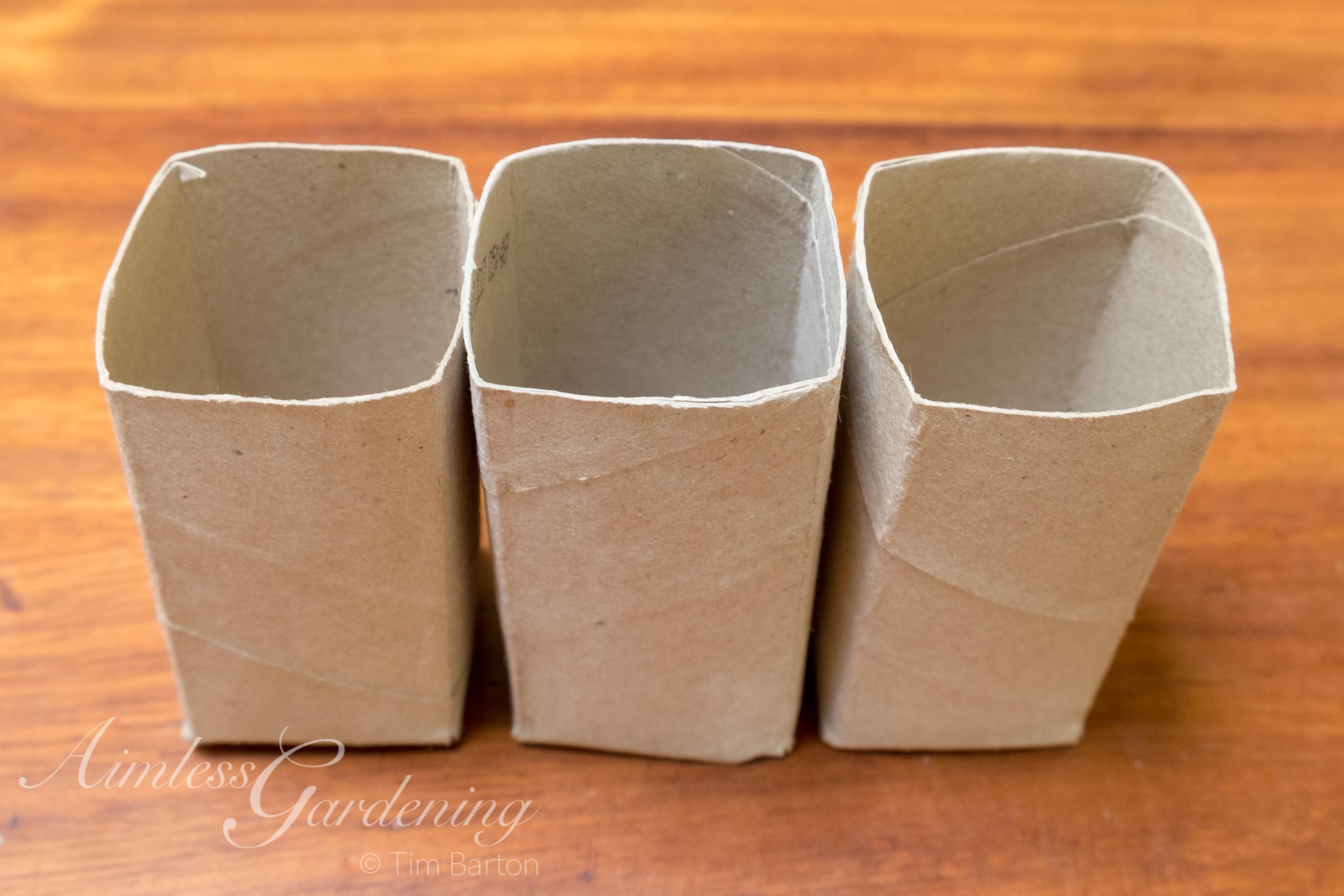 Toilet roll plant pots