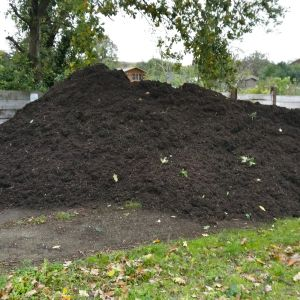 15 tonnes of compost