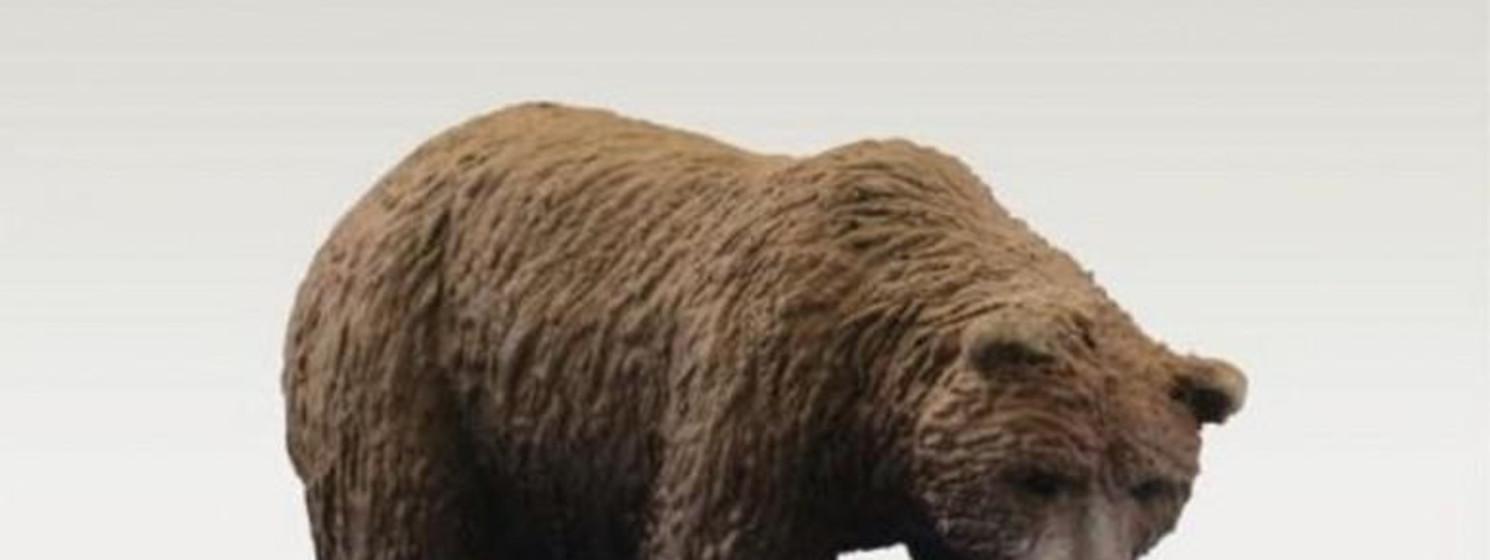 ceramic brown bear