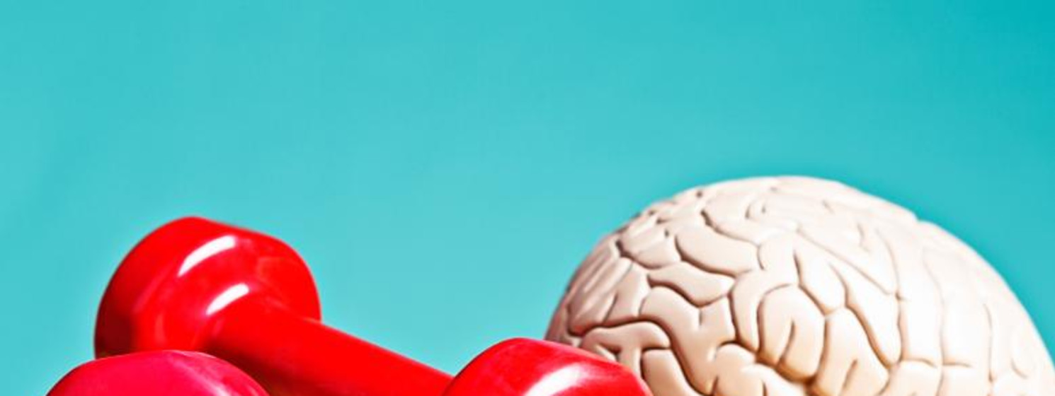Pair of red fitness barbells next to brain for sports psychology concept