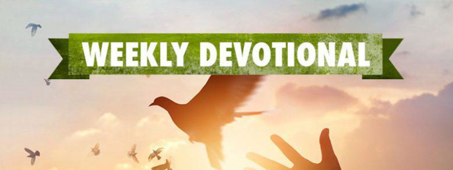 Weekly Devotional, Hands throwing up dove