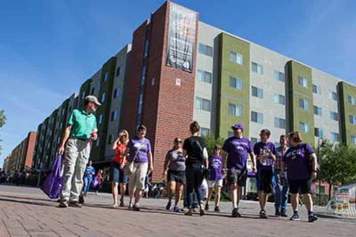 Intramurals Intramural Sports Grand Canyon University
