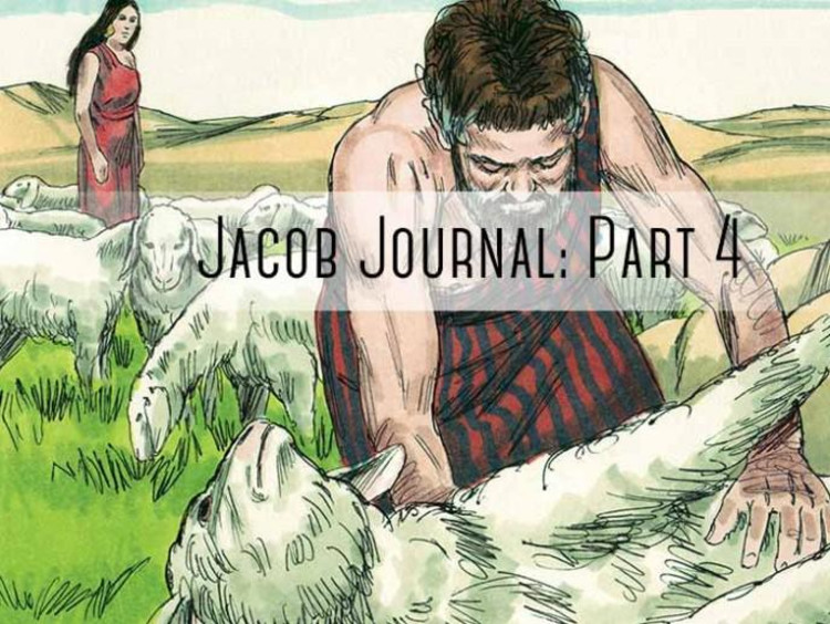 """sheapard helping sheep with """"jacob journal part 4"""""""