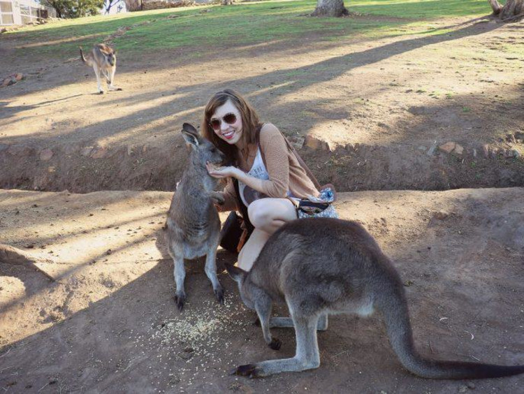 Kate with kangaroos in Tasmania