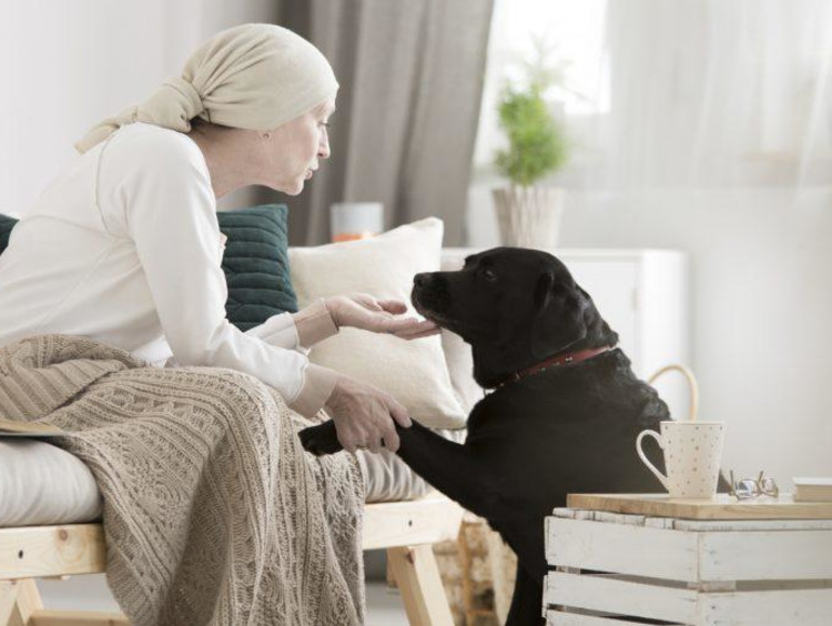 Woman interacting with a dog during a therapy session