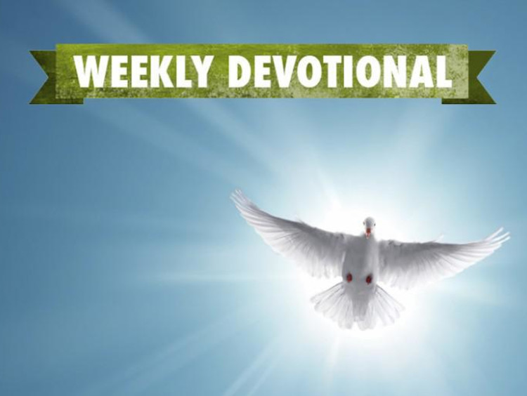 A white dove under the Weekly Devotional banner