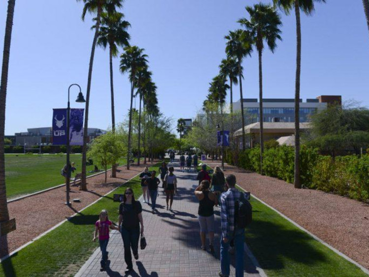GCU's main promenade and palm trees