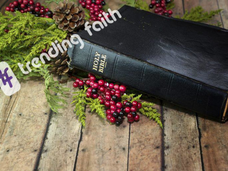 bible and holly