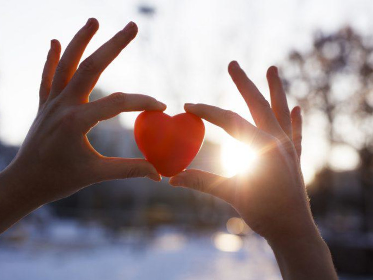 person holding up a heart