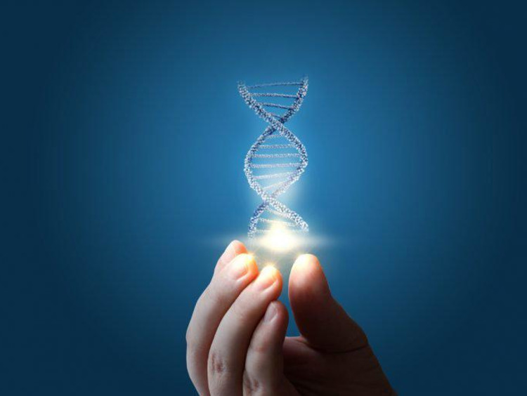 Person holding visualized DNA