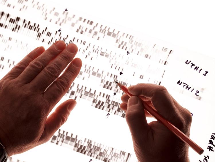 Man analyzes forensic chart