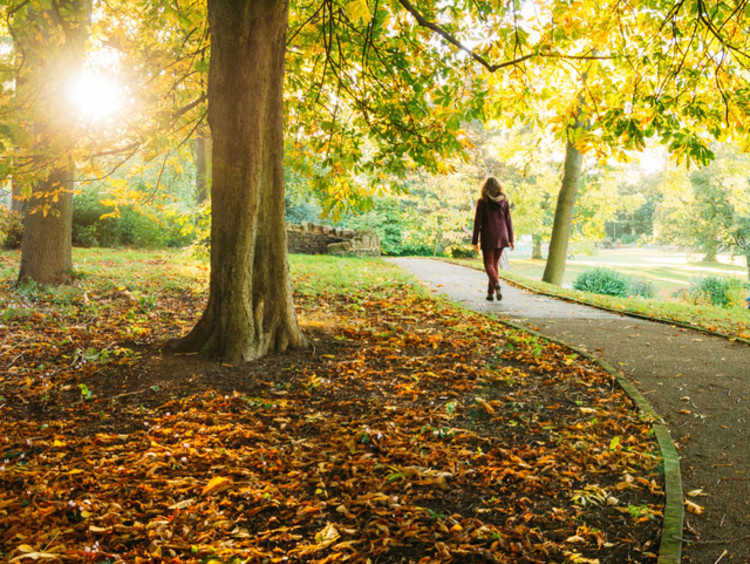 girl walking on path in a park
