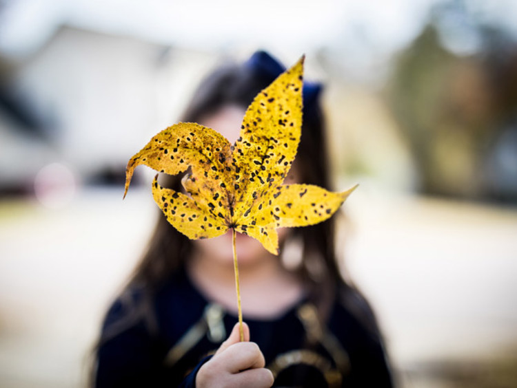 girl holding a leaf in front of her face