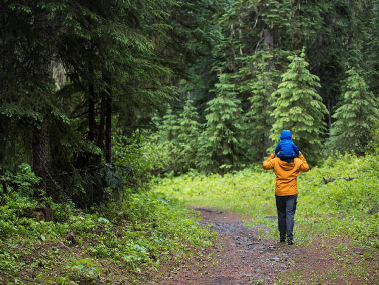 Father carries son through a forest trail