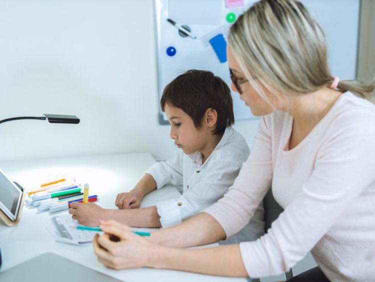 Woman teacher tutoring one student