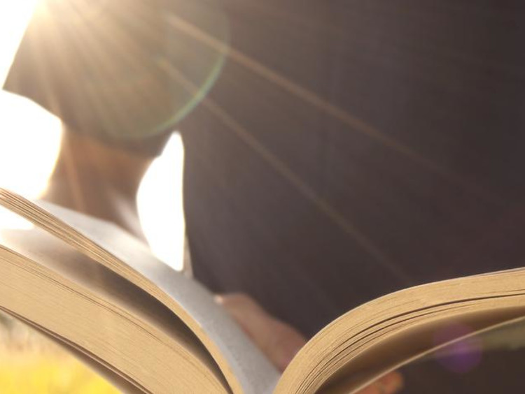 A person reading a book outside in the sunshine