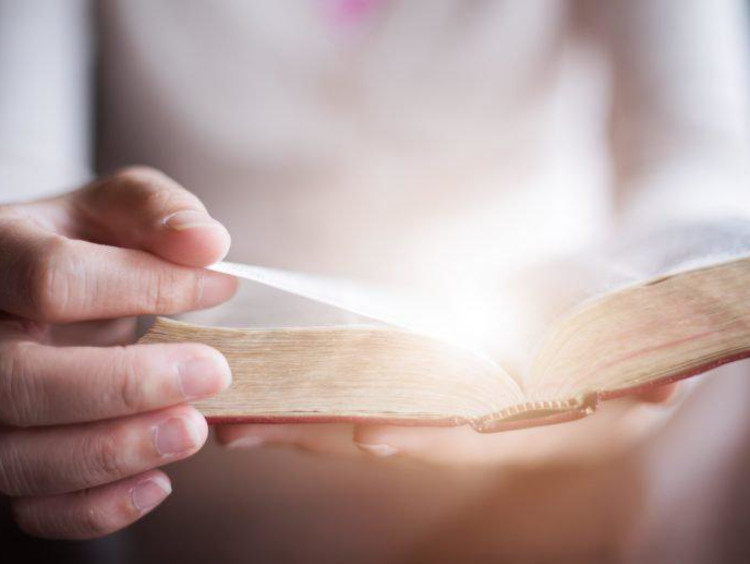 person reading the bible