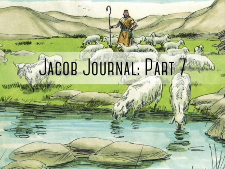 """sheapard and sheep with """"jacob journal part 7"""" over it"""