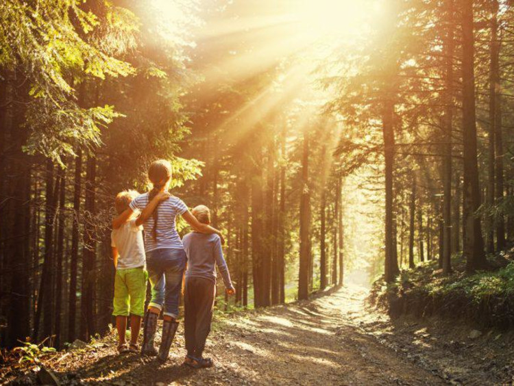 Mom and two kids look towards the sunlight on a hiking trail
