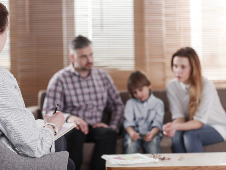 Family meets with a family dynamics counselor