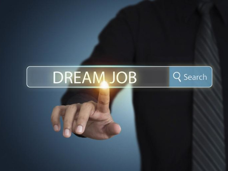 person typing dream job in search bar