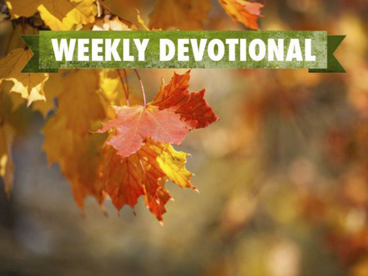 Weekly devotional text on top of red and yellow autumn leaves background