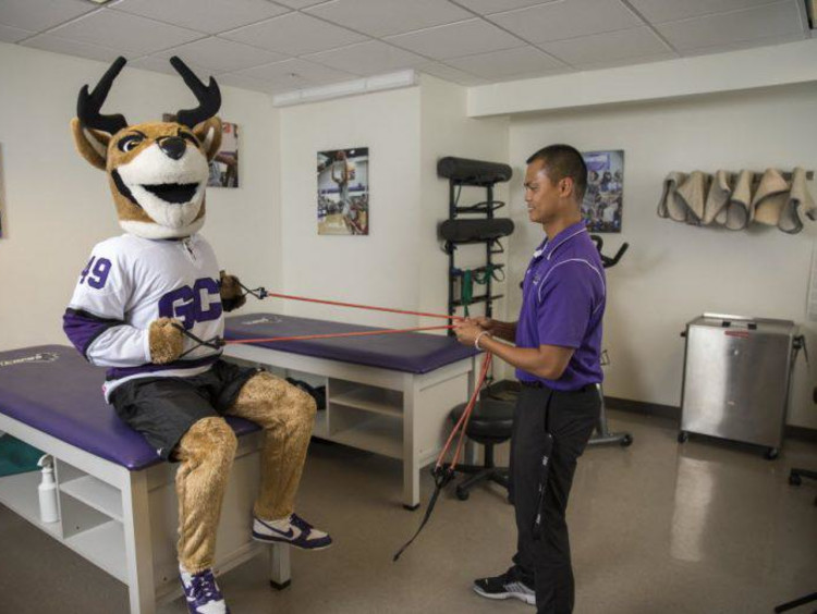 GCU mascot Thunder doing strength conditioning