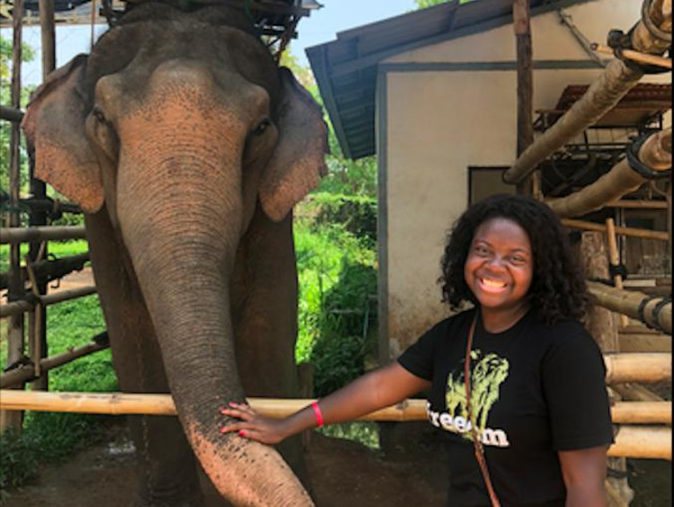 girl standing next to an elephant