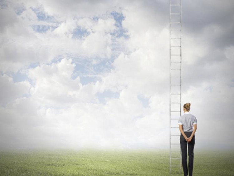 person standing in field looking at a ladder