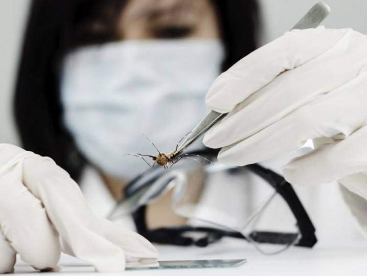 a doctor holding a virus