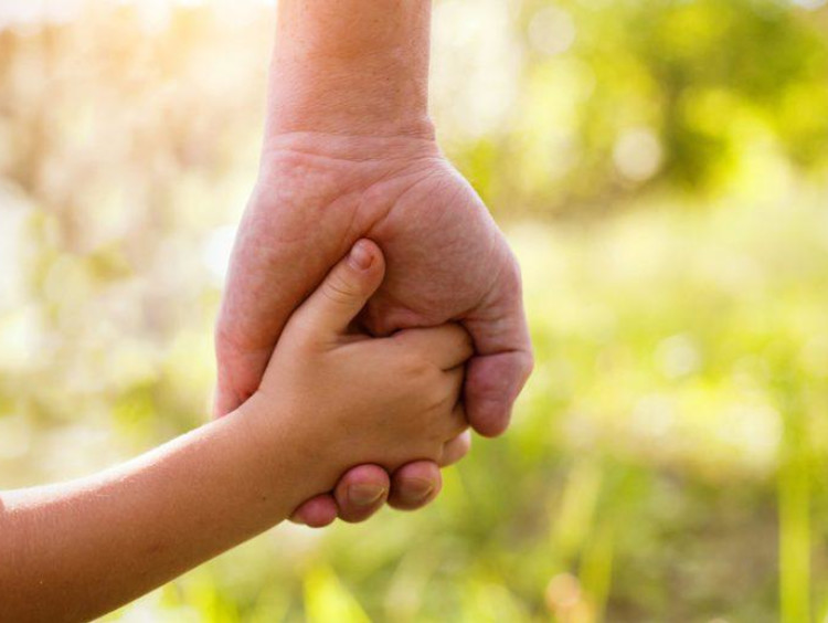 Adult hand holds child's hand with green foliage in background