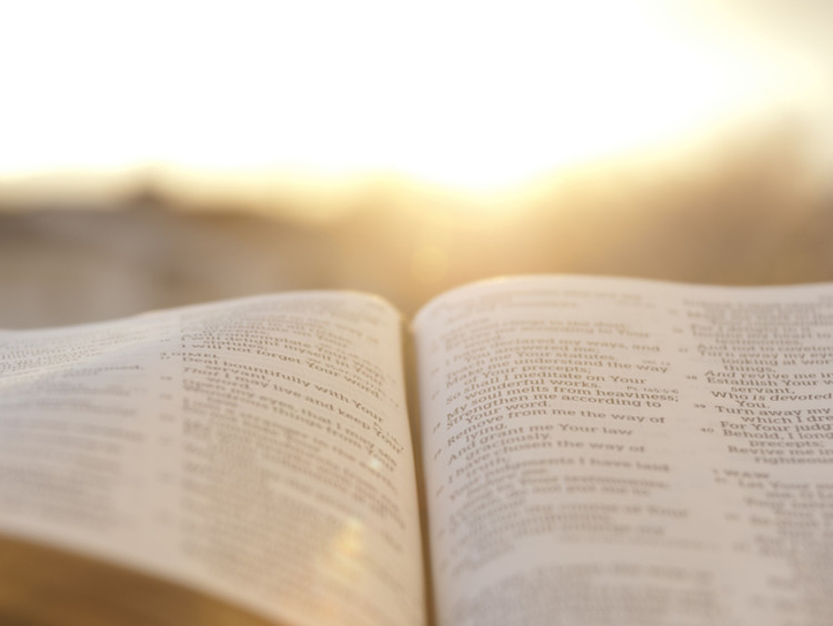 Bible open in the sun