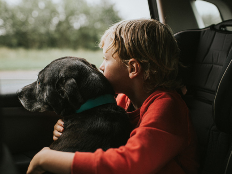 Little boy in a red shirt holding his dog in the car and both are looking out the window