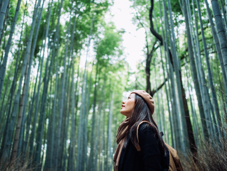 Woman taking in the beauty of God's creation in the forest