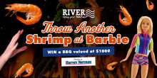river1467 throwanothershrimpatbarbie slider