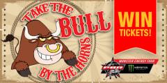 take bull slider