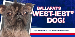 ballarats west iest dog slider