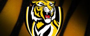 Season over for star Tiger