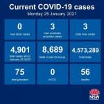 NSW_Health_COVID19_250121_edit.jpg