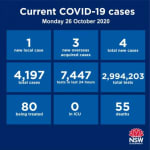 NSW_Health_COVID19_261020_edit.jpg