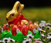 hare-1282915_640.jpg