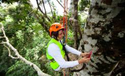 Dr_Sandra_Tuszynska_in_one_of_the_Mary_Cairncross_BioBlitz_strangler_fig_trees.jpg