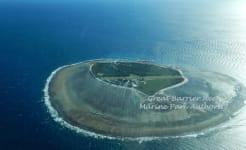 Lady_Elliot_Island_miranda.jpg